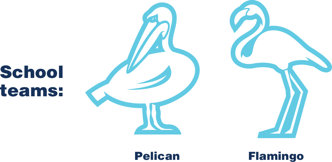 School teams: Pelican, Flamingo